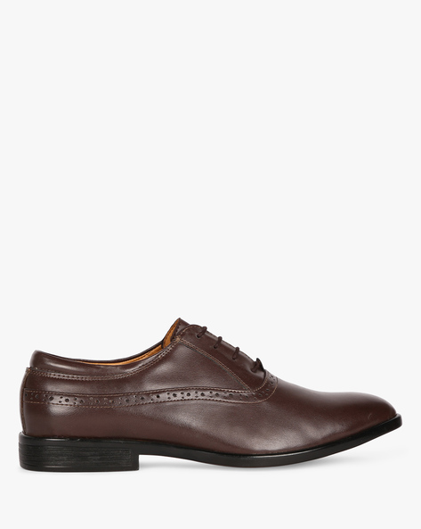 Oxford Shoes With Broguing By ESCARO ( Brown )